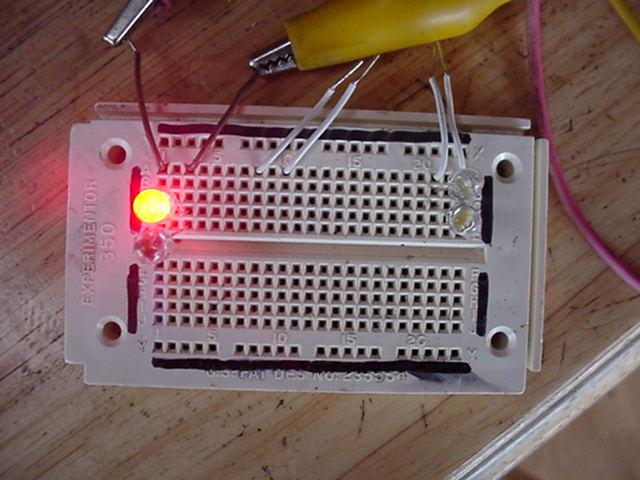 LEDs lit by Hamster