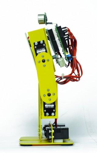 Расположение платы управления и сервоприводов робота BIPE.