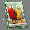 Development Board mikroElektronika mikromedia for ARM