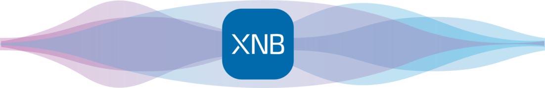 Доступный протокол: вэтом году нарынке появится XNB-чип