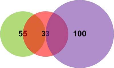 Пример 1. Графическое представление исходных данных