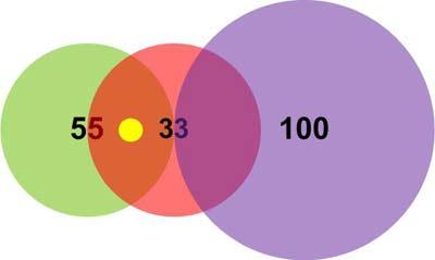 Пример 1. Положение вектора (13,13)