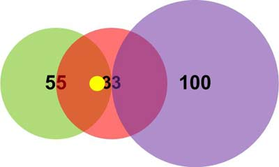 Пример 1. Положение вектора (14,14)
