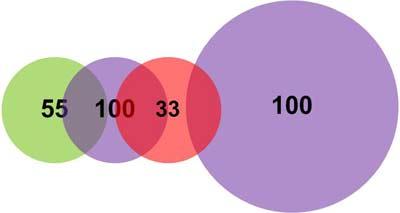 Пример 1. Самообучение нейронов при добавлении нового вектора заключается в сужении поля интересов