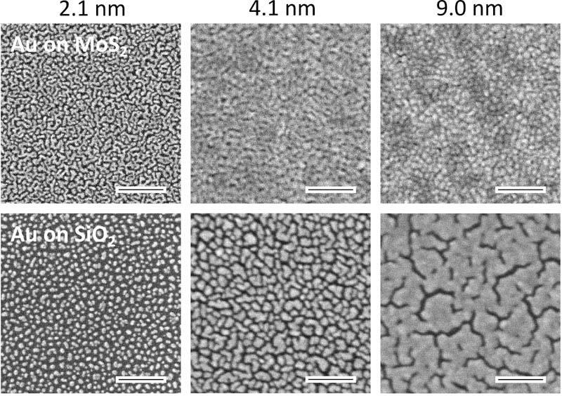 Электронная микроскопия золотых пленок разной толщины