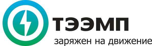ТЭЭМП Logo