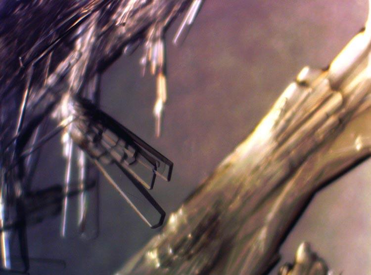Химики получили новый материал для инфракрасных светодиодов