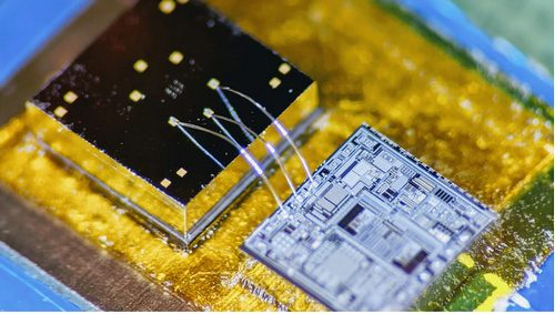 MEMS-Like Accelerometer-Microphone Captures Lung Cardiac Vibe